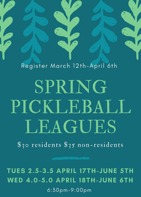 SpringPickleballLeagues